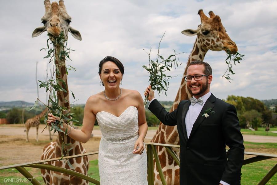 boda-africam-safari-puebla-493