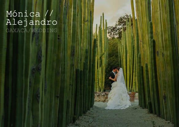 Boda Jardin Etnobotanico Oaxaca / Fotografos de Bodas